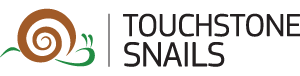 Snail Farming Investment